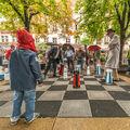 Jak ty šachy hrají