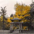 Čínský pavilon
