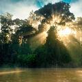 Východ slunce nad řekou Kinabatangan