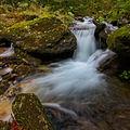Podzim na Borovém potoce