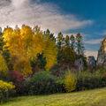 Kolíbky štětcem malíře podzimu.
