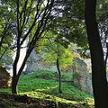 Podhradie Čičva