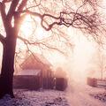 Sluncem zalité