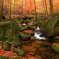 Hájený potok(Jizerské hory)