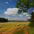Letní krajinou