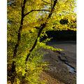 ...podzim...