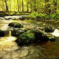 Podzim a potok