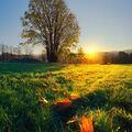 Podzimní východ slunce v Písečné