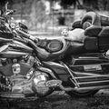 obětovat Harley Davidson pro tým?