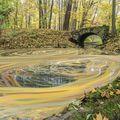 Podzim maluje