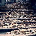 Zámecké schodiště