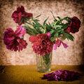 Broken Flowers VII.