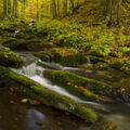 Skalní potok