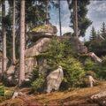 Tajemství lesa