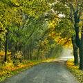 Přichází podzim