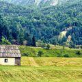 Opuštěná chata