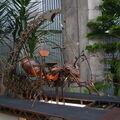 Mechanický Mravenec