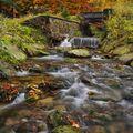 Podzim na Poniklém potoce