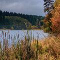 Podzim u jezera.