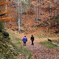 Na podzimní procházce