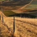 zelenohnědý svět Moravského Toskánska