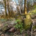 bordýlek aneb jak si příroda bere zpět to co člověk použil-zneužil-opustil