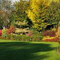 Podzim v zámeckém parku v Pščině