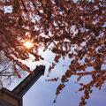 Jaro pod věží