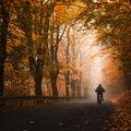 Podzimní ráno.