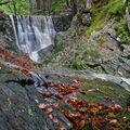 Černohorský potok v Krkonoších