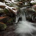 Zimní Černý potok