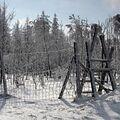 Zima za plotem