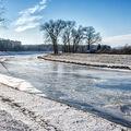 Zamrzlá řeka Morava