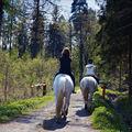 ...na koních dovoleno
