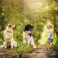Tři kamarádi :)