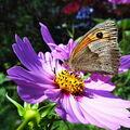 Radost ze života v přírodě