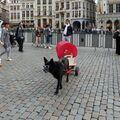 Turista v Bruselu