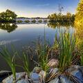 -- Most přes rybník Vítek --
