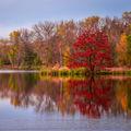 Ještě jedna podzimní, tentokrát v barvě