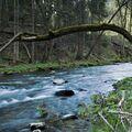 Stříbrná řeka.