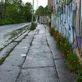 Graffiti a máky