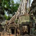 Angkor Wat Ta Prohm Temple