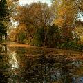 ...podzimní...