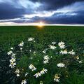 západa slunce