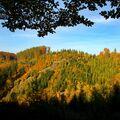 Podzimní výhled z lesa na les :)