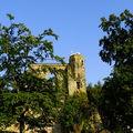 Zbytky hradu Oybin