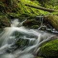 Jehněčí potok
