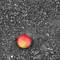 Ztracené jablko
