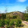 Ruprechtický Špičák 880 m - nejvyšší vrchol Javořích hor
