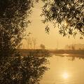 Svítání u rybníčku